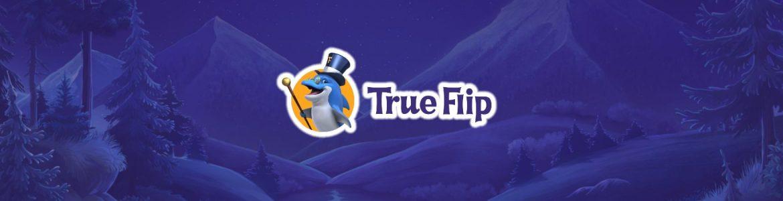 True Flip erfahrungen
