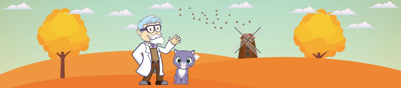 Professore con gatto radura e mulino